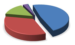 Income pie chart